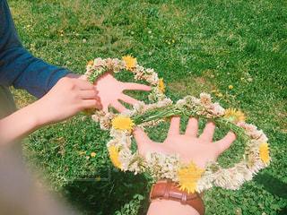 いくつかの草を食べている女の子の写真・画像素材[1170683]