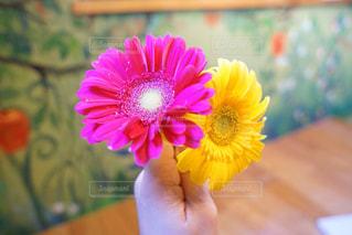 テーブルの上の花の花瓶の写真・画像素材[1870448]