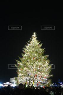 空の花火のグループの写真・画像素材[2828435]