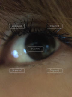 目の写真・画像素材[662920]