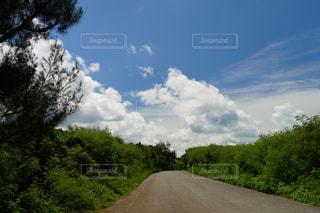 雲の写真・画像素材[663086]