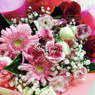 ピンクの花束の写真・画像素材[2109478]
