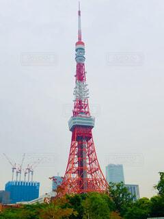 東京タワーの写真・画像素材[4756171]