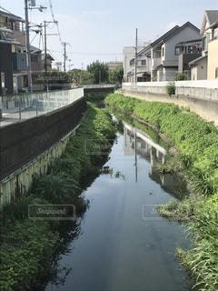 小川の写真・画像素材[663647]