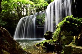 自然の写真・画像素材[664215]