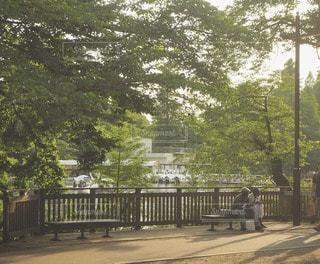 風景 - No.86123