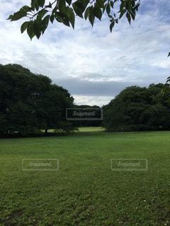 公園の写真・画像素材[666031]