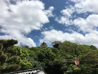 青空の下にそびえる丸亀城の写真・画像素材[665843]