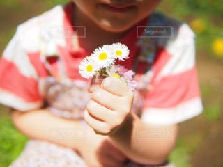 花と小さな女の子 - No.946094