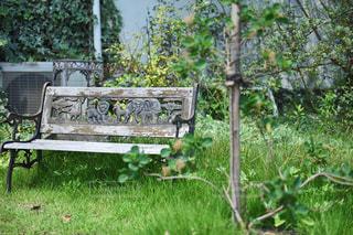 緑豊かなガーデンの木製ベンチの写真・画像素材[1232598]