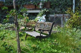 ガーデンにある木製ベンチの写真・画像素材[1232604]