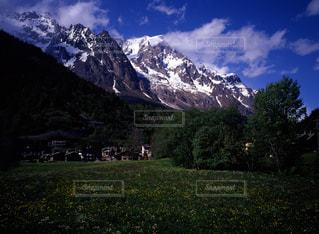 自然の写真・画像素材[667243]