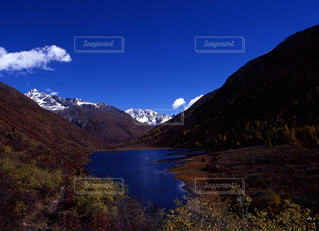 自然の写真・画像素材[667608]