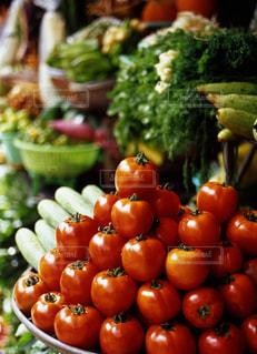 トマトの写真・画像素材[668154]