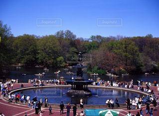 公園の写真・画像素材[668299]