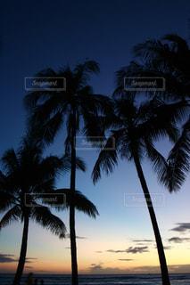 ビーチリゾートの写真・画像素材[670522]