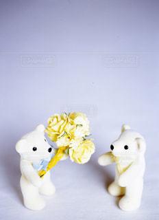 花束の写真・画像素材[670777]