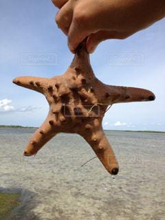 海の写真・画像素材[670782]