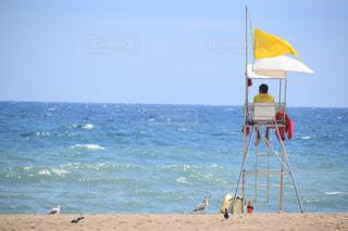 海の写真・画像素材[682624]
