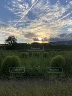山形の夕暮れの写真・画像素材[1565090]
