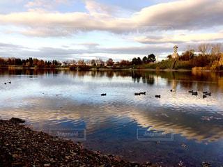 ドイツの湖の鴨の群れ。の写真・画像素材[1639679]