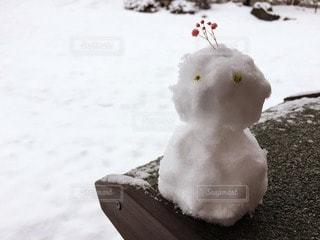冬の写真・画像素材[11466]