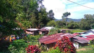 原住民が住む村の写真・画像素材[760321]