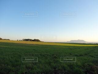 草原と函館山の写真・画像素材[808096]
