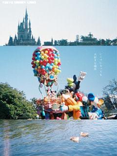 ディズニーの写真・画像素材[667602]