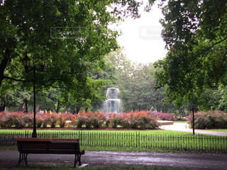 公園のベンチの写真・画像素材[720731]