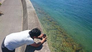 海の写真・画像素材[674178]