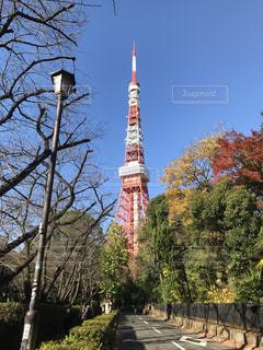東京タワー - No.669803