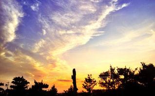 夕焼け空に浮かぶ雲の写真・画像素材[767548]