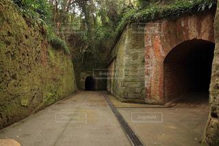 石の橋の写真・画像素材[786665]