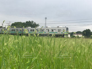 草道を進め電車よの写真・画像素材[2011331]