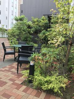 街中の緑のベンチの写真・画像素材[735567]