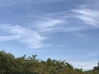 9月の爽やかな日の写真・画像素材[736561]
