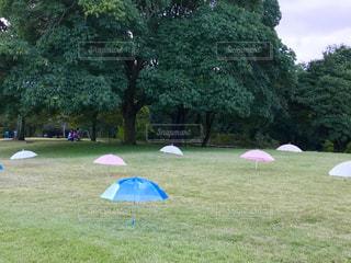 芝生にかわいい傘☂ - No.792086