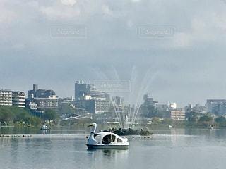 湖を泳ぐスワンボートの写真・画像素材[846035]