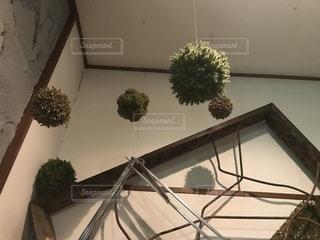 カフェの天井から吊らされた丸いもこもこ😄の写真・画像素材[964302]