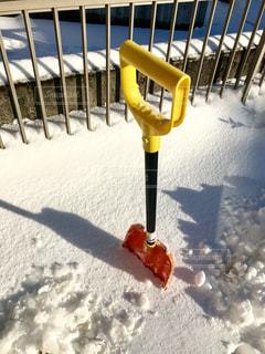 珍しく雪が積もった❄の写真・画像素材[1081608]