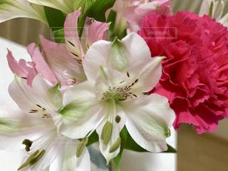 花瓶にいけた花🌸の写真・画像素材[1118993]