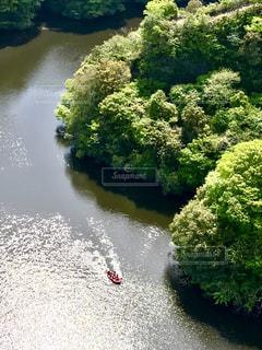 竜神大吊橋から見た風景🏞の写真・画像素材[1157376]