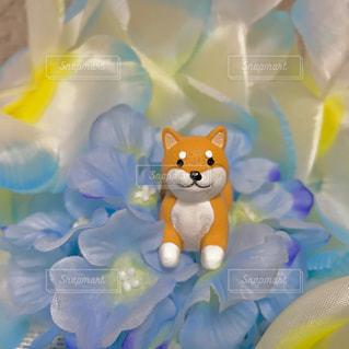 犬と花の置物🌼の写真・画像素材[1238447]