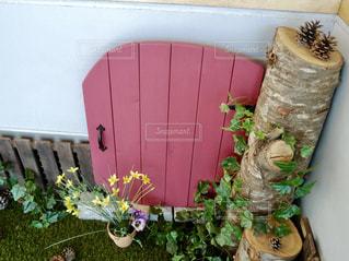 小人が出てきそうなピンクのドアの写真・画像素材[1443675]