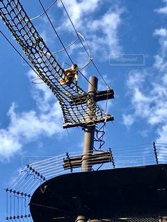 人間が歩く上空を、お猿さんが歩いたりぶら下がったり綱渡り🐒💕の写真・画像素材[1611631]