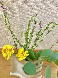 花瓶に生けた生花とユーカリ🌼🍀の写真・画像素材[2441167]