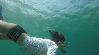 海の写真・画像素材[672169]