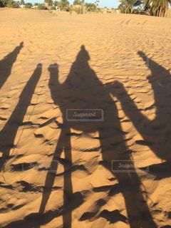 moroccoの写真・画像素材[672954]