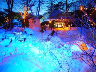 雪の写真・画像素材[673257]